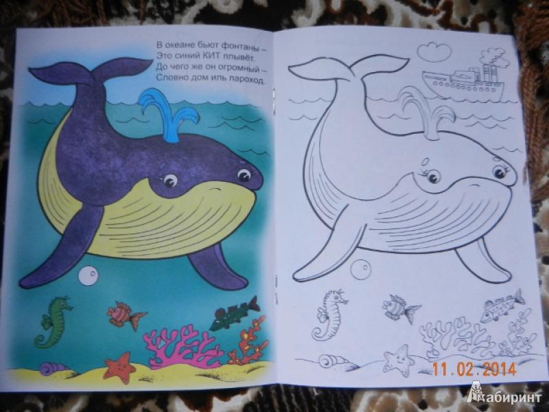 Иллюстрация 1 из 25 для Кто живет в воде - Наталья Мигунова | Лабиринт - книги. Источник: Гаврилова  Татьяна