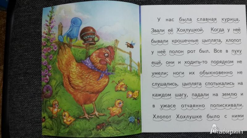 Иллюстрация 2 из 20 для То, чего котик не ожидал - Александр Федоров-Давыдов | Лабиринт - книги. Источник: ИринаИ