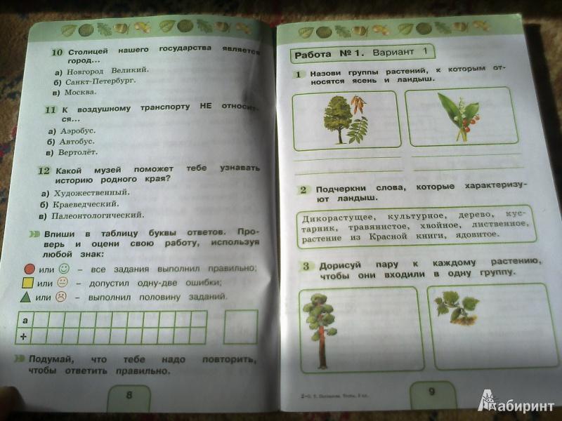 Скачать учебник по окружающему миру 3 класс поглазова