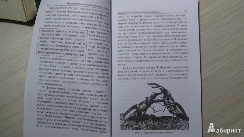 Иллюстрация 1 из 9 для Власть, пол и репродуктивный успех - Марина Бутовская | Лабиринт - книги. Источник: Консультант по наукам