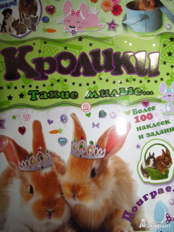 Иллюстрация 12 из 21 для Почеши за ушком! Кролики: такие милые...   Лабиринт - книги. Источник: olga_potapova_y