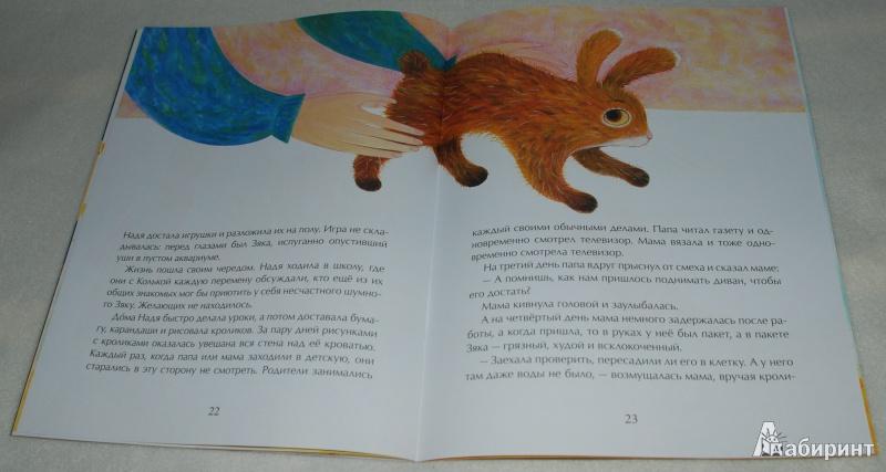 Иллюстрация 23 из 47 для Декоративный Зяка - Олег Корниенко   Лабиринт - книги. Источник: Книжный кот