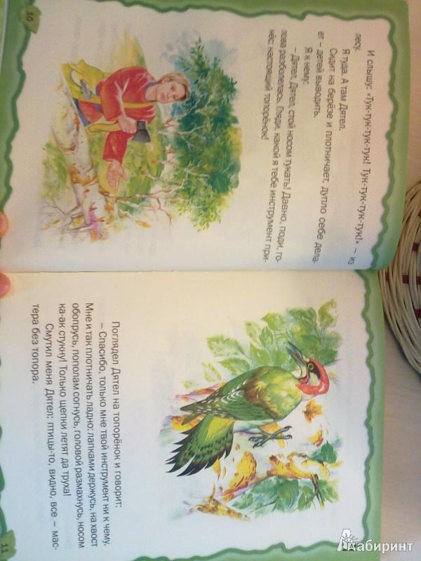 Иллюстрация 1 из 10 для Лесные небылицы - Виталий Бианки | Лабиринт - книги. Источник: Успенская  Вероника Олеговна