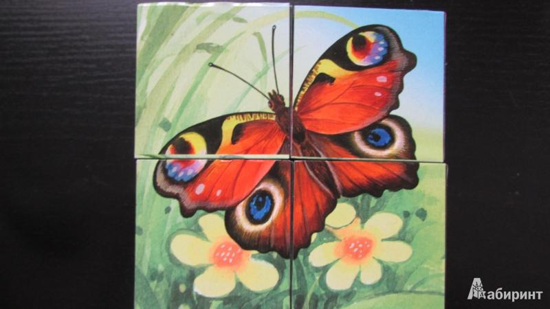 """Иллюстрация 13 из 53 для Кубики """"Baby Step. Лесные животные"""". 4 кубика, в ассортименте (87325-330)   Лабиринт - игрушки. Источник: Ксепинта"""
