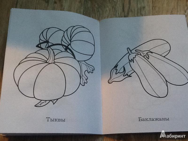 Иллюстрация 1 из 5 для Моя первая раскраска. Большая книга раскрасок для самых маленьких | Лабиринт - книги. Источник: Демидова  Наталья