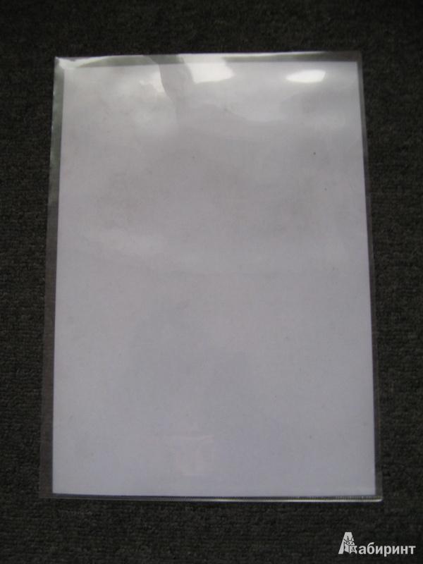 Иллюстрация 1 из 5 для Папка-уголок А4 плотный пластик (CYЕ310-14C) | Лабиринт - канцтовы. Источник: Leporella