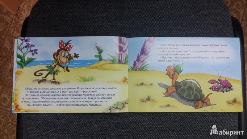 Иллюстрация 21 из 26 для Обезьяна и черепаха - С. Рунге | Лабиринт - книги. Источник: Еремеева  Ирина