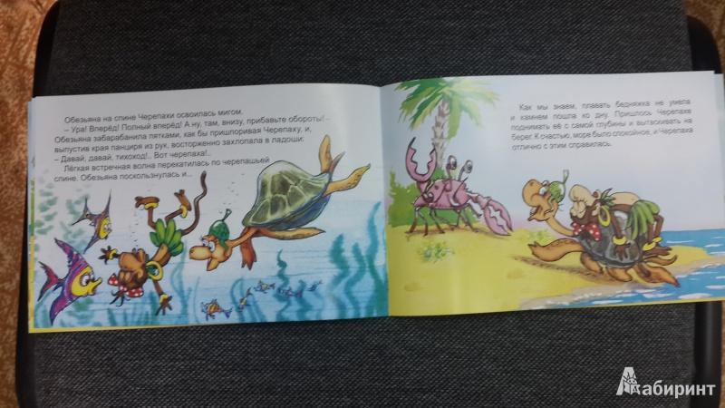 Иллюстрация 23 из 26 для Обезьяна и черепаха - С. Рунге   Лабиринт - книги. Источник: Еремеева  Ирина