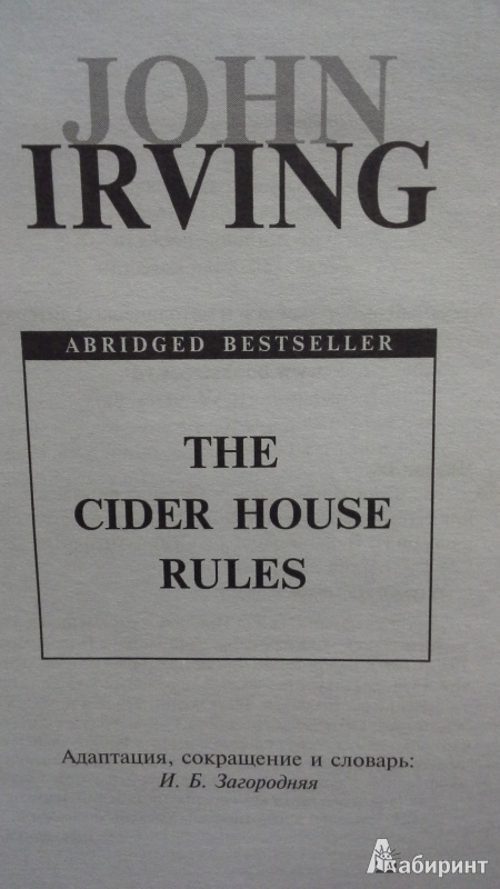 john irvings the cider house rules essay