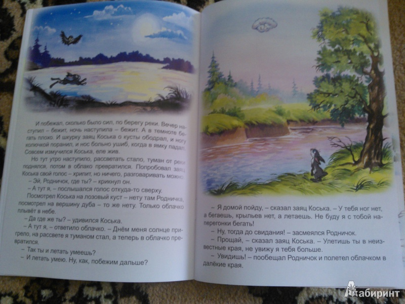 Иллюстрация 13 из 14 для Волшебные очки - Николай Грибачев | Лабиринт - книги. Источник: Вероника Руднева
