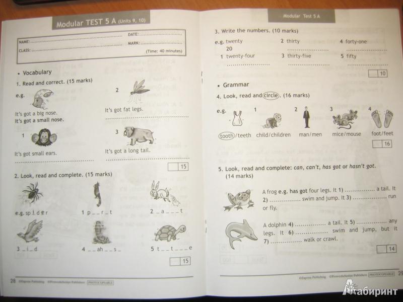 из для Английский в фокусе класс Контрольные задания  Иллюстрация 13 из 16 для Английский в фокусе 3 класс Контрольные задания ФГОС Быкова Дули Эванс