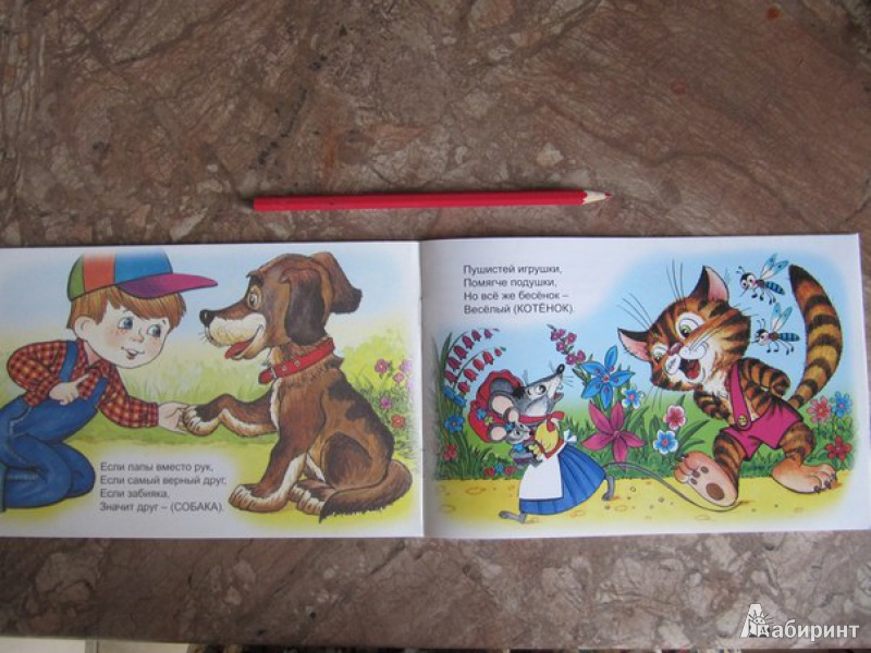 Иллюстрация 20 из 25 для Домашний зоопарк - Борис Эльшанский | Лабиринт - книги. Источник: Данилова  Мария Александровна
