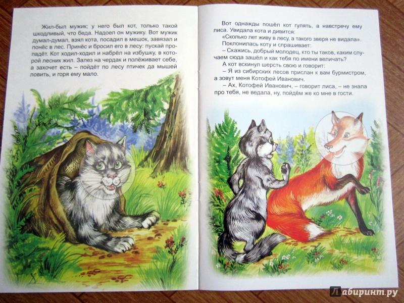 Иллюстрация 1 из 9 для Кот и лиса | Лабиринт - книги. Источник: Гончарова  Ирина