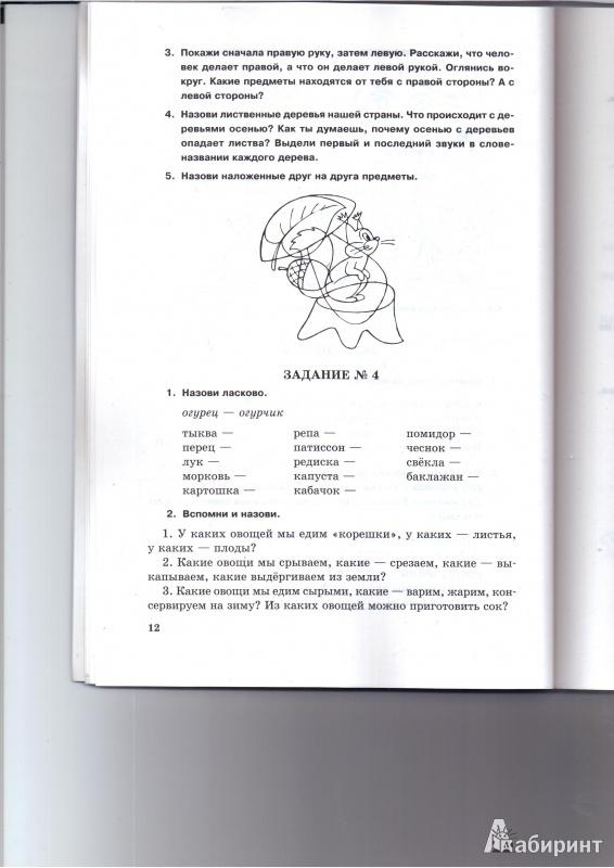 ЗАНИМАТЕЛЬНЫЕ ЗАДАНИЯ ЛОГОПЕДА 2 3 КЛАСС ЯВОРСКАЯ СКАЧАТЬ БЕСПЛАТНО