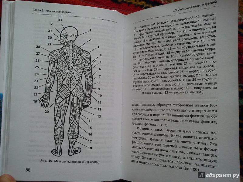 Остеопатия коган