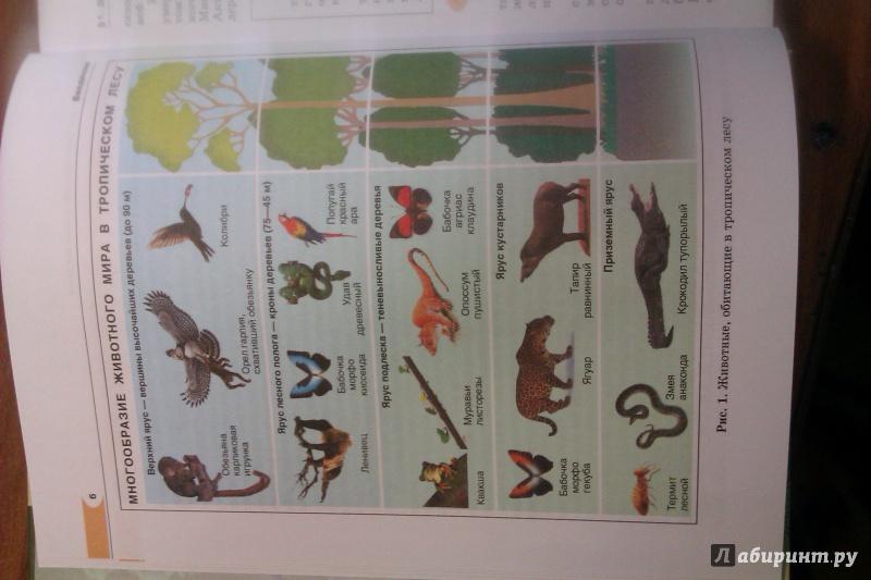 Биология 7 Класс Учебник Трайтак Суматохин Гдз