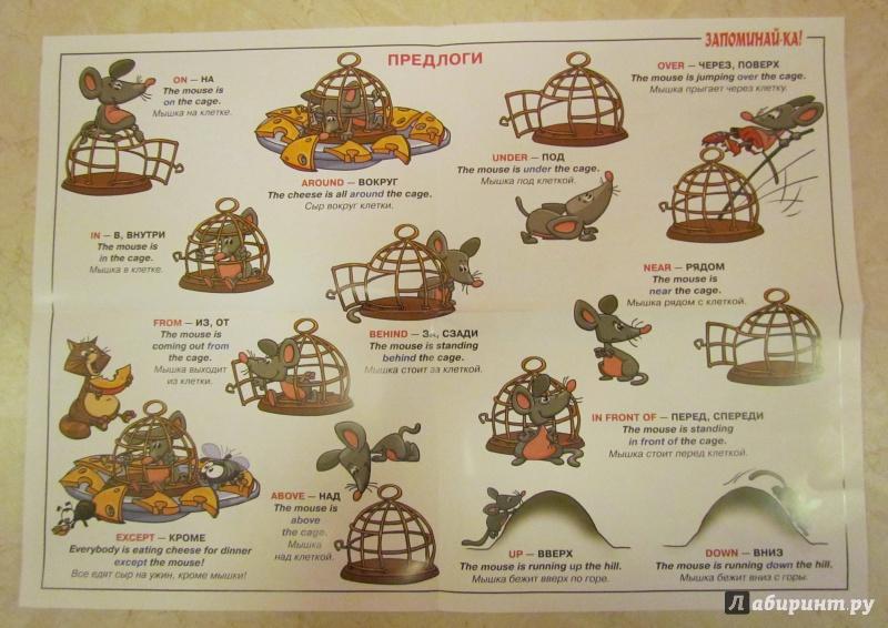 Грамматика английского языка сборник правил и упражнений