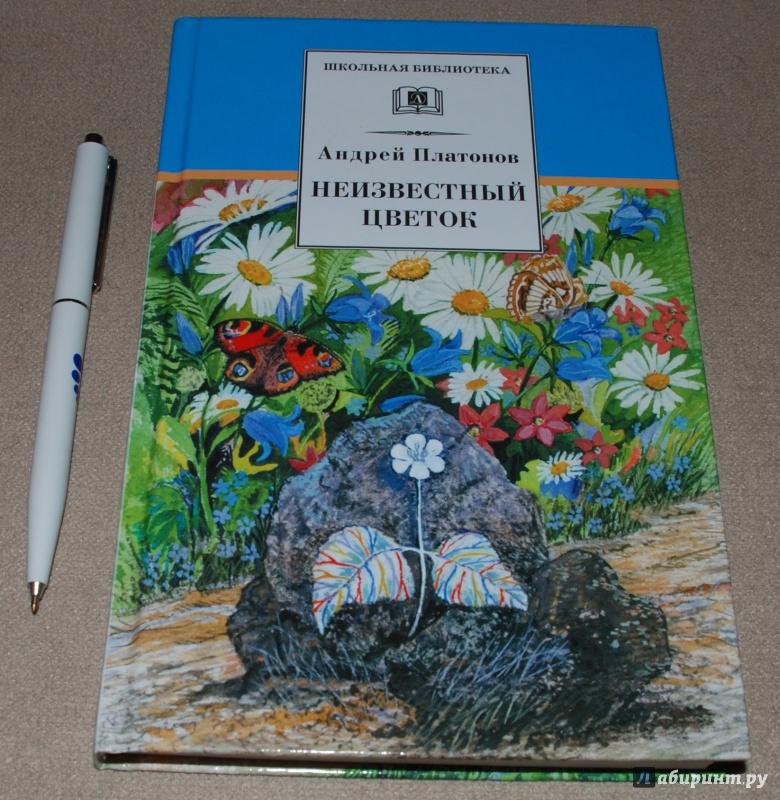 Иллюстрация 6 из 25 для Неизвестный цветок - Андрей Платонов   Лабиринт - книги. Источник: Книжный кот