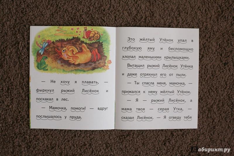 Иллюстрация 10 из 11 для Как рыжий лисенок мамой уткой был - Елена Ермолова | Лабиринт - книги. Источник: дважды