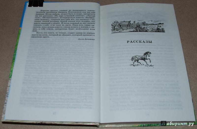 Иллюстрация 11 из 25 для Неизвестный цветок - Андрей Платонов | Лабиринт - книги. Источник: Книжный кот