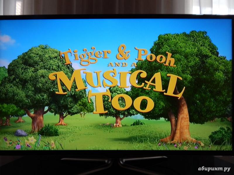 Иллюстрация 1 из 30 для Мюзикл большого леса + Тигр и Винни (2DVD) - Дэвид Хартман | Лабиринт - видео. Источник: Мелкова  Оксана