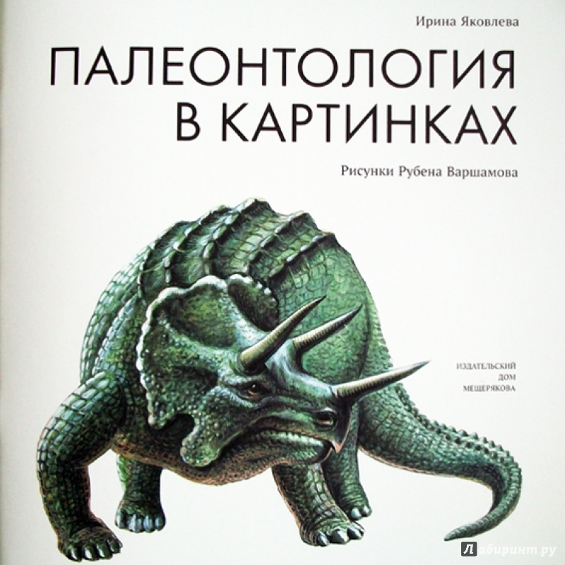 Иллюстрация 6 из 65 для Палеонтология в картинках - Ирина Яковлева | Лабиринт - книги. Источник: Bliss65