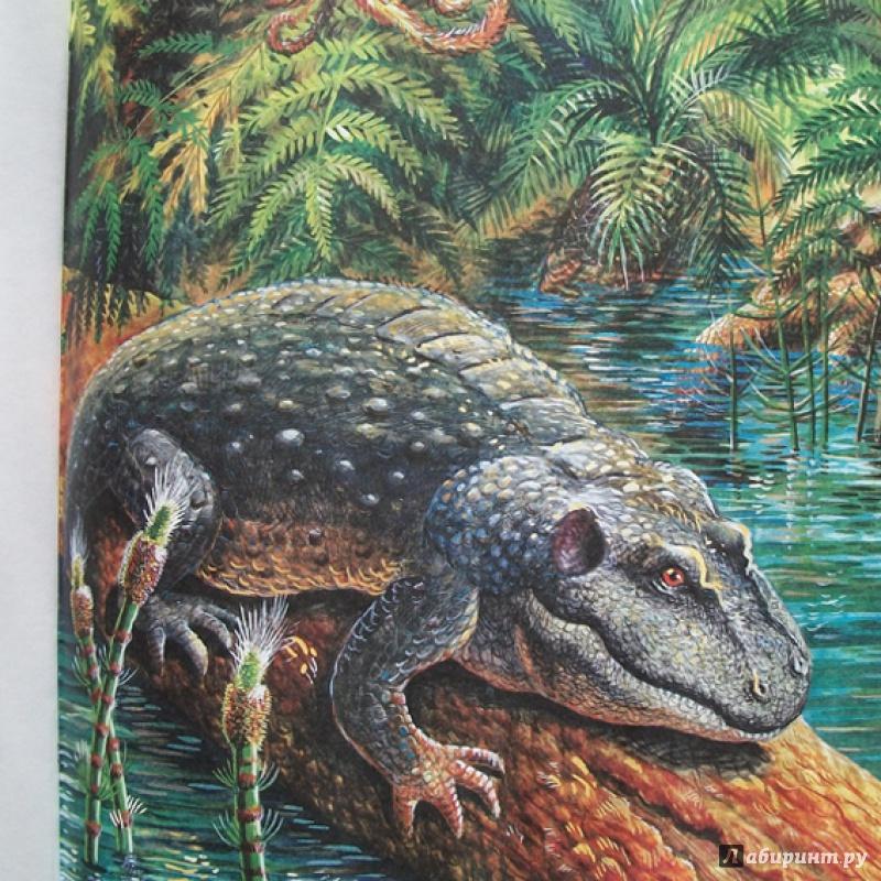 Иллюстрация 8 из 65 для Палеонтология в картинках - Ирина Яковлева | Лабиринт - книги. Источник: Bliss65