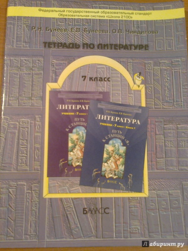Н.в.степанов,о.в.чиндилова тетрадь по литературе 9 класс гдз