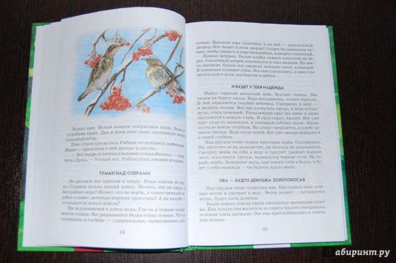 Иллюстрация 5 из 13 для Все добрые люди - одна семья - Василий Сухомлинский   Лабиринт - книги. Источник: Егорова  Екатерина
