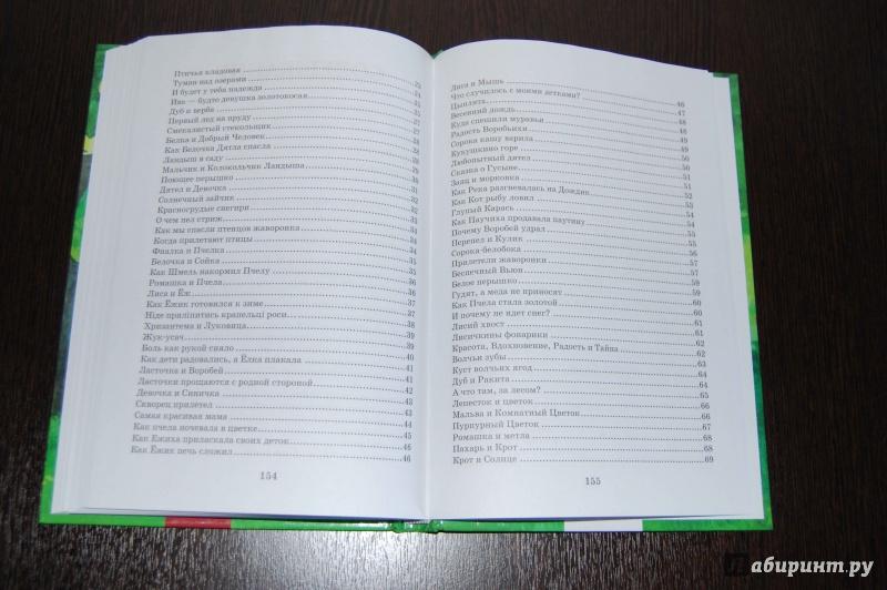 Иллюстрация 11 из 13 для Все добрые люди - одна семья - Василий Сухомлинский   Лабиринт - книги. Источник: Егорова  Екатерина