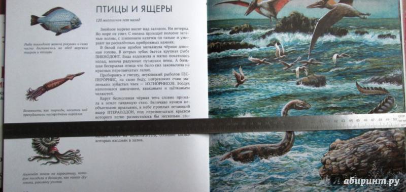 Иллюстрация 23 из 65 для Палеонтология в картинках - Ирина Яковлева   Лабиринт - книги. Источник: Алонсо Кихано