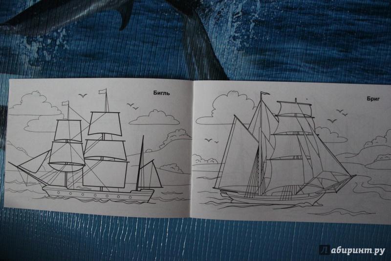 Красивые к тому же корабли подписаны