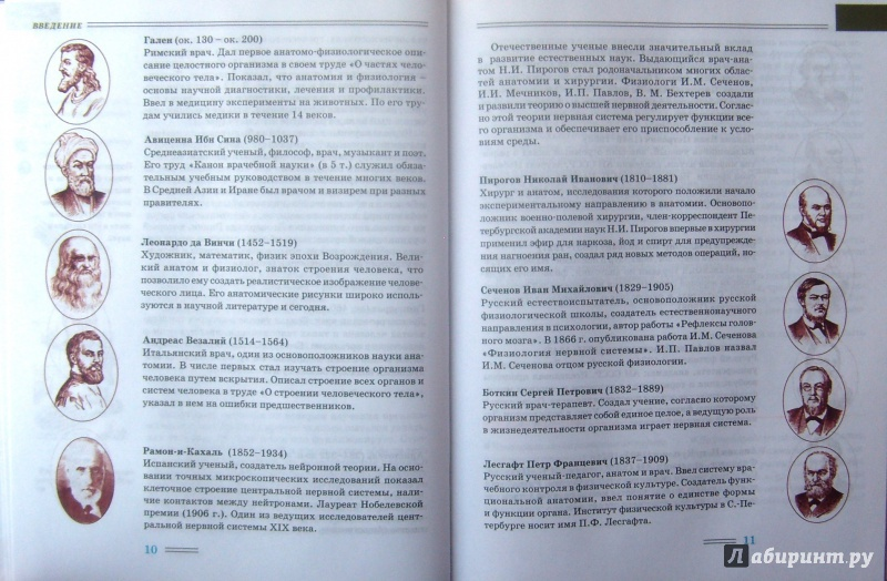 Учебник по биологии 8 класса любимова маринова