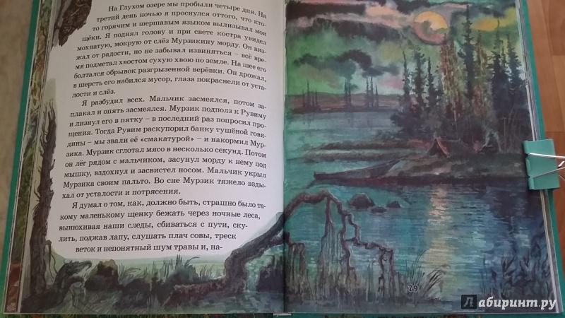 Константин Паустовский Критика Рассказы К Паустовского