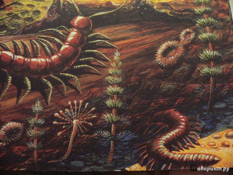 Иллюстрация 49 из 65 для Палеонтология в картинках - Ирина Яковлева   Лабиринт - книги. Источник: In_Ferrum