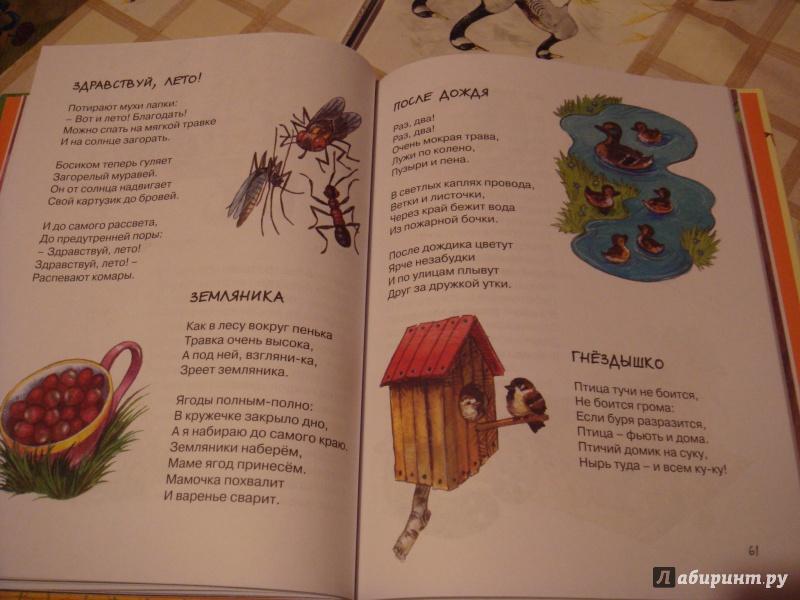 Иллюстрация 14 из 44 для Мамин день рождения - Галина Лебедева   Лабиринт - книги. Источник: Волкова  Алена