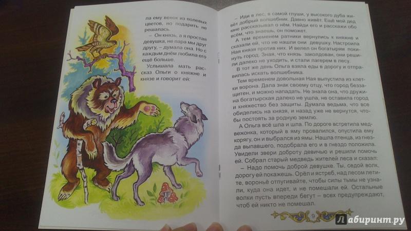 Иллюстрация 24 из 28 для Сказка про настоящую любовь - Виталий Лиходед | Лабиринт - книги. Источник: bamboo