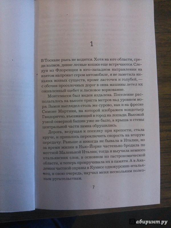 Иллюстрация 1 из 5 для Лев правосудия - Леена Лехтолайнен | Лабиринт - книги. Источник: Фридлейн  Ольга