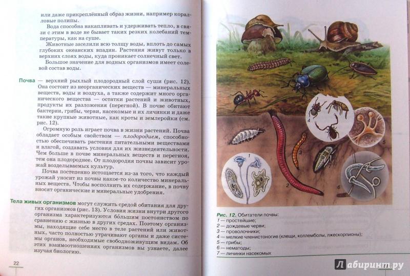 Класс гдз грибы растения биологии по 5 бактерии пасечник