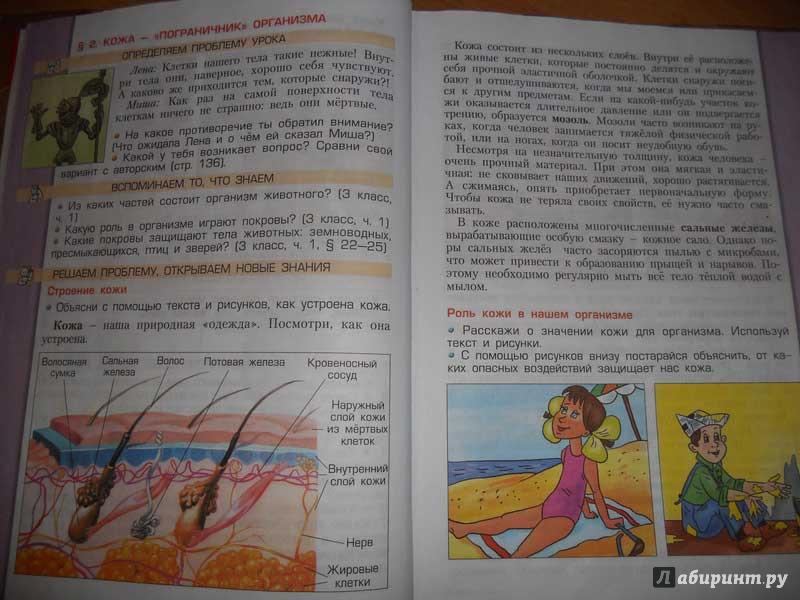 гдз учебник 4 класса окружающий мир 2 часть