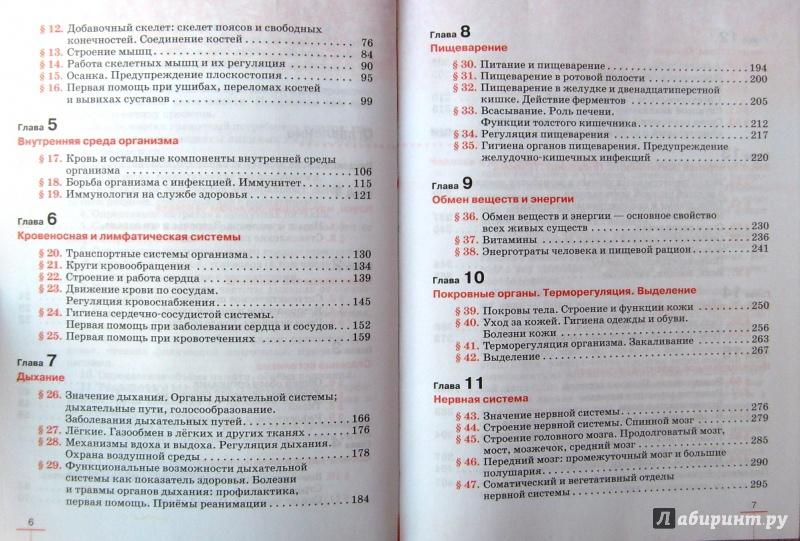 Гдз Физика 6 Класс Даммер Хохлова