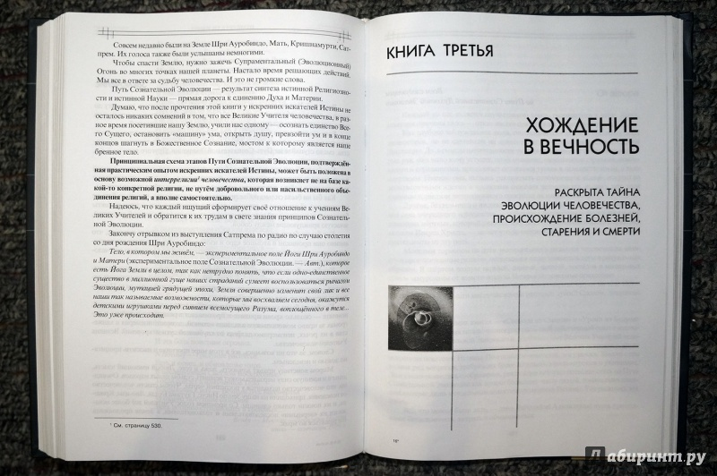 Карьерист.ру работа в сургуте