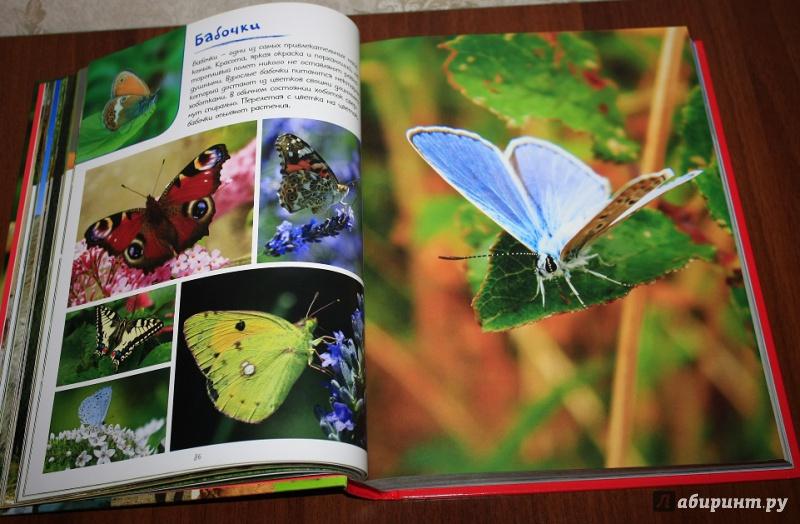 моя большая книга о животных.1000 фотографий