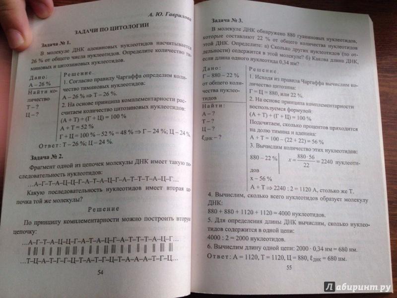 гдз по биологии 10-11 класс беляев ответы на вопросы учебника