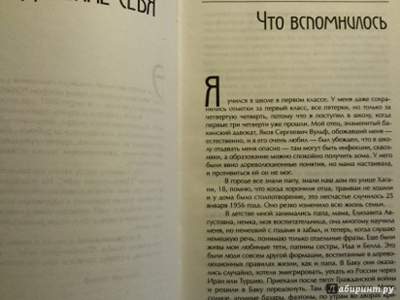 Иллюстрация 1 из 13 для Серебряный шар - Виталий Вульф   Лабиринт - книги. Источник: frida2014