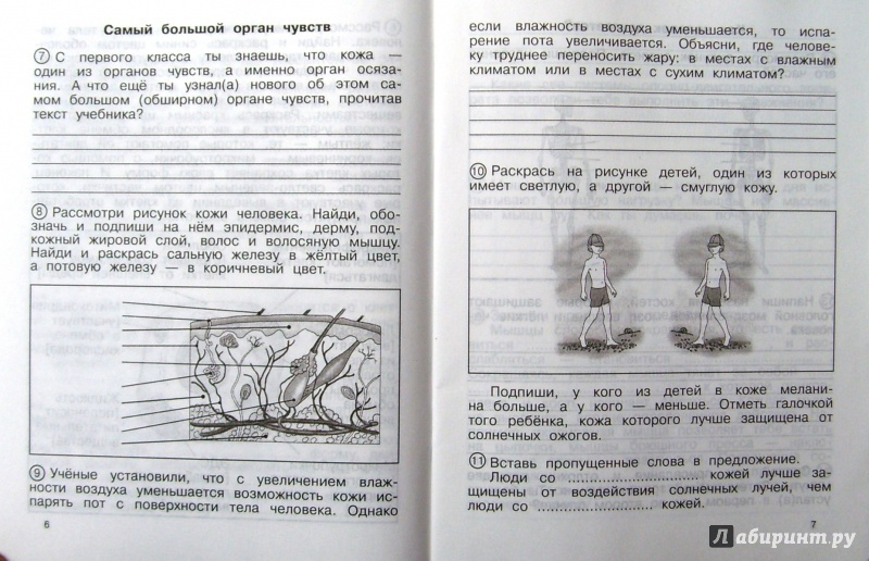 Гдз по окружающему миру 4 класс федотова трофимова кудрова