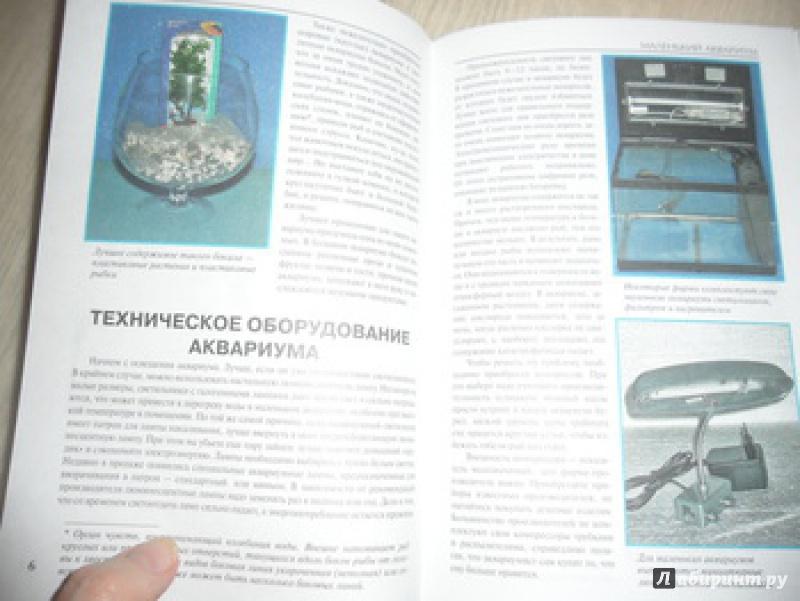 Иллюстрация 6 из 13 для Маленький аквариум - Александр Гуржий | Лабиринт - книги. Источник: юлия д.