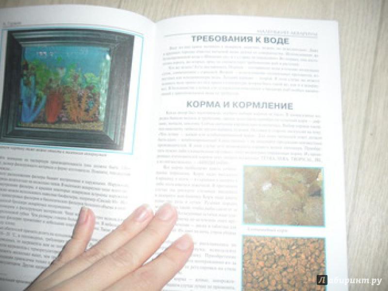 Иллюстрация 7 из 13 для Маленький аквариум - Александр Гуржий | Лабиринт - книги. Источник: юлия д.