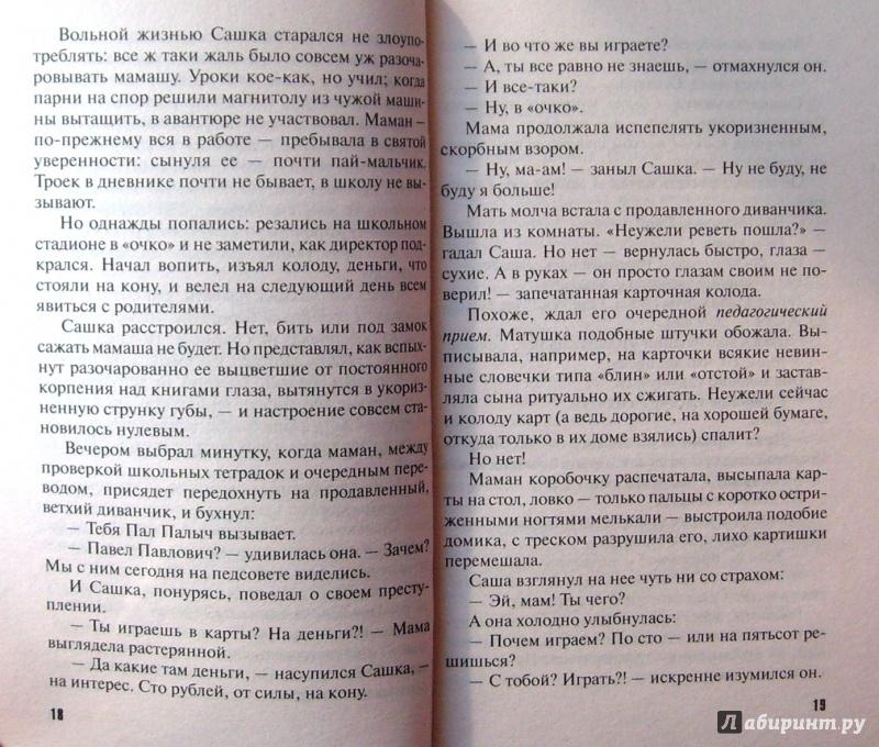 Иллюстрация 13 из 17 для Несвятое семейство - Литвинова, Литвинов | Лабиринт - книги. Источник: Соловьев  Владимир