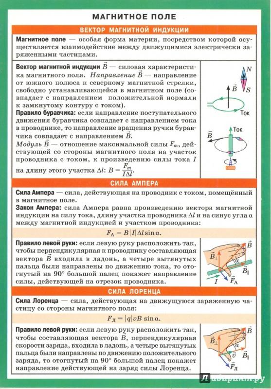 Иллюстрация 1 из 5 для Магнитное поле. Электромагнитная индукция | Лабиринт - книги. Источник: Елена Весна